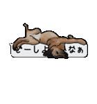 犬が寝ちゃってて読みにくいスタンプ(個別スタンプ:26)