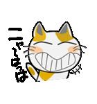 みーこ 3(個別スタンプ:01)