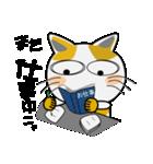 みーこ 3