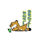 たぬきのドロン太くん vol.2 (改正版)(個別スタンプ:03)