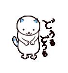 40匹の水玉猫(個別スタンプ:17)