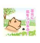 ぶーぶーちゃん その2(個別スタンプ:35)