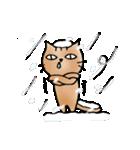 猫のトラタ5 冬(個別スタンプ:6)