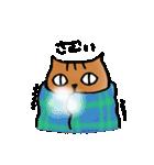 猫のトラタ5 冬(個別スタンプ:7)