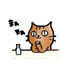 猫のトラタ5 冬(個別スタンプ:15)