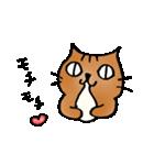猫のトラタ5 冬(個別スタンプ:23)