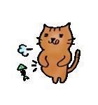 猫のトラタ5 冬