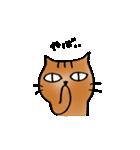 猫のトラタ5 冬(個別スタンプ:37)