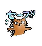 猫のトラタ5 冬(個別スタンプ:38)