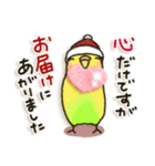 インコちゃん 冬パック(個別スタンプ:16)