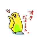 インコちゃん 冬パック(個別スタンプ:30)
