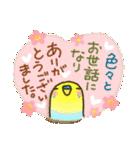 インコちゃん 冬パック(個別スタンプ:33)
