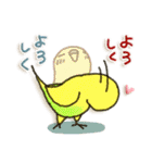 インコちゃん 冬パック(個別スタンプ:39)