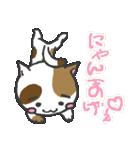 三毛ぬこ こめ&じぇすちゃ(個別スタンプ:1)