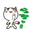 三毛ぬこ こめ&じぇすちゃ(個別スタンプ:2)