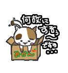 三毛ぬこ こめ&じぇすちゃ(個別スタンプ:6)