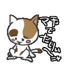 三毛ぬこ こめ&じぇすちゃ(個別スタンプ:9)