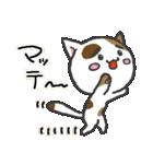 三毛ぬこ こめ&じぇすちゃ(個別スタンプ:12)
