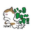 三毛ぬこ こめ&じぇすちゃ(個別スタンプ:22)