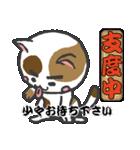 三毛ぬこ こめ&じぇすちゃ(個別スタンプ:31)