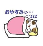 三毛ぬこ こめ&じぇすちゃ(個別スタンプ:40)