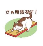 猫しぐさ(個別スタンプ:05)