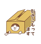 猫しぐさ(個別スタンプ:11)