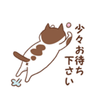 猫しぐさ(個別スタンプ:14)