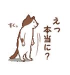 猫しぐさ(個別スタンプ:26)