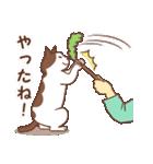 猫しぐさ(個別スタンプ:28)