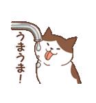 猫しぐさ(個別スタンプ:29)