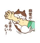 猫しぐさ(個別スタンプ:30)