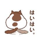 猫しぐさ(個別スタンプ:31)