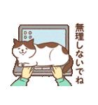 猫しぐさ(個別スタンプ:38)