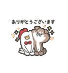 柴さんと手羽崎さん6(個別スタンプ:3)