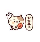 ぶちネコさん~正月&冬~(個別スタンプ:16)