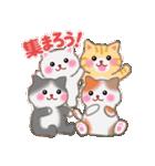 一年中おめでとう!by MGファミリー(個別スタンプ:31)
