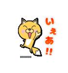 ネットゲーム専用キツネ(個別スタンプ:05)