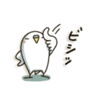 白インコさん(個別スタンプ:4)