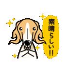 iinu ボルゾイ(個別スタンプ:09)