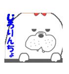 ★冬のあざらし~クリスマス・年末年始~★(個別スタンプ:23)