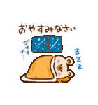 【お正月と冬】ゆるーいくまさん(個別スタンプ:22)