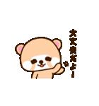 アライグマのぷーにゃん・冬編(個別スタンプ:12)