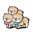 江戸っ仔犬 赤毛三兄弟(個別スタンプ:01)