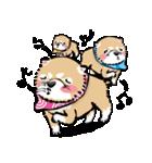 江戸っ仔犬 赤毛三兄弟(個別スタンプ:03)