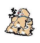 江戸っ仔犬 赤毛三兄弟(個別スタンプ:12)