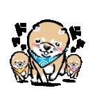 江戸っ仔犬 赤毛三兄弟(個別スタンプ:23)