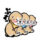 江戸っ仔犬 赤毛三兄弟(個別スタンプ:24)