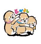 江戸っ仔犬 赤毛三兄弟(個別スタンプ:25)