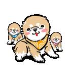 江戸っ仔犬 赤毛三兄弟(個別スタンプ:30)